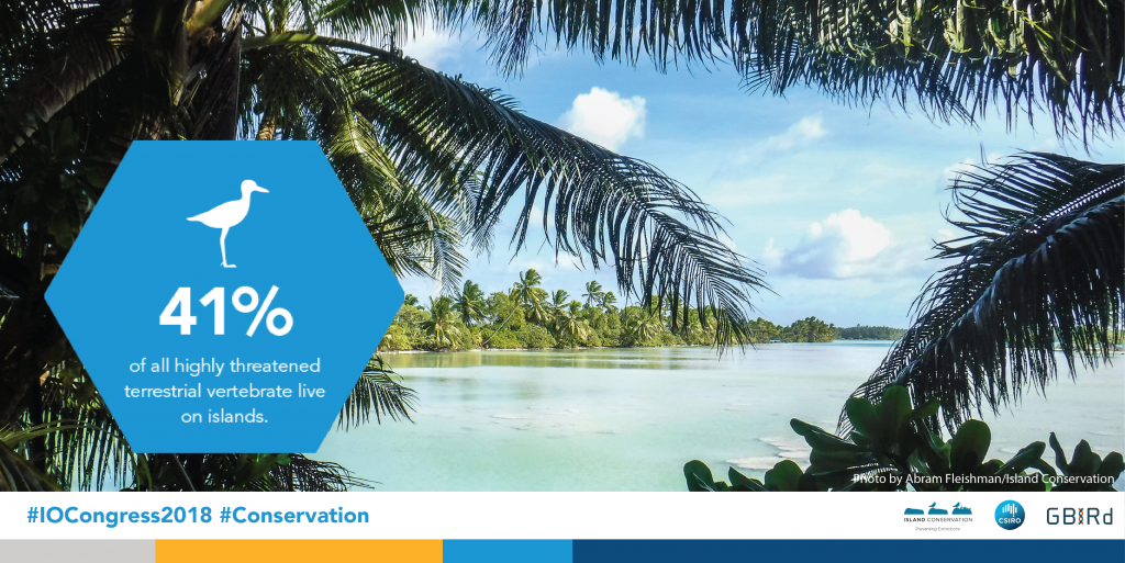 island-conservation-invasive-species-preventing-extinctions-international-ornithological-congress-critically-endangered-species