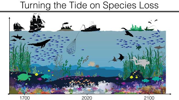 genetic-biocontrol-invasive-rodents-program-island-conservation-turning-tide-species-loss